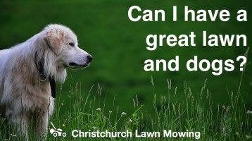 Christchurch Lawn Mowing