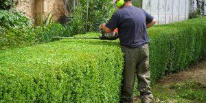 Christchurch Lawn Mowing